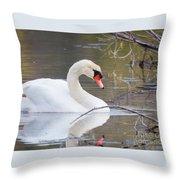 Mute Swan I Throw Pillow