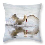 Mute Swan Landing I Throw Pillow