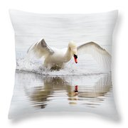 Mute Swan Landing II Throw Pillow