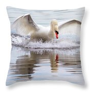 Mute Swan Plunge Throw Pillow