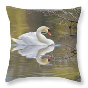 Mute Swan Reflection I Throw Pillow