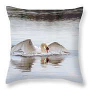 Mute Swan Swim Throw Pillow