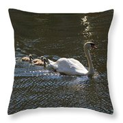 Mute Swan With Three Cygnets Following Throw Pillow