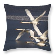 Mute Swans In Flight Throw Pillow
