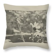 Muted Beauty 1 Throw Pillow