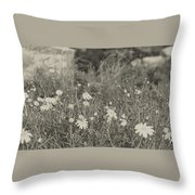 Muted Beauty 4 Throw Pillow
