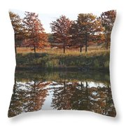 Muted Fall Throw Pillow