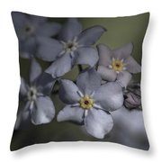 Muted Forget Me Not  Throw Pillow