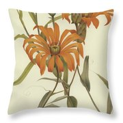 Mutisia Decurrens Throw Pillow