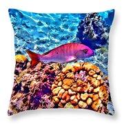 Mutton Reef Throw Pillow