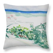 My Beach Cottage In Siesta Key Throw Pillow