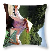 My Boat Guide For The Tour.  Throw Pillow