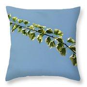My Bougainvillea Aurea 1 Throw Pillow