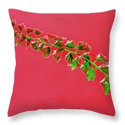 My Bougainvillea Aurea 4 Throw Pillow