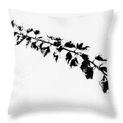 My Bougainvillea Aurea 5 Throw Pillow
