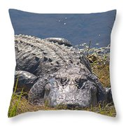 My Buddy Throw Pillow
