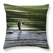 Cormorant - My Catch For The Day Throw Pillow