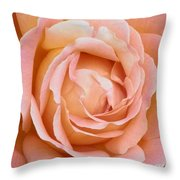 My Daily Rose Throw Pillow