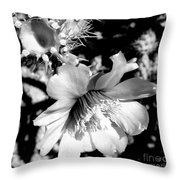 My Desert Rose Throw Pillow