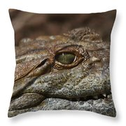 My Eye Is On You Throw Pillow