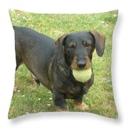 My Favored Toy Throw Pillow