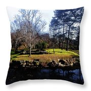 My Favorite Pond Throw Pillow
