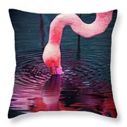My Favorite Reflection   Throw Pillow