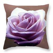 My Favorite Rose Throw Pillow