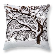 My Favorite Tree In The Snow Throw Pillow