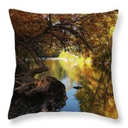 My Favorite View Throw Pillow