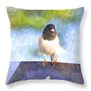 My Feathers Throw Pillow