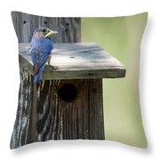 My First Bluebird Throw Pillow