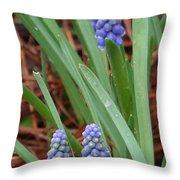 My First Grape Hyacinths Throw Pillow