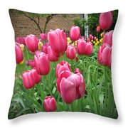 My Focus Was On The Tulips Throw Pillow