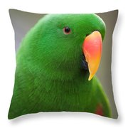 My Friend Kazuko Throw Pillow