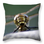 My Friend Vince The Dragonfly Throw Pillow