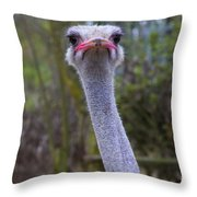 My Head Is Not In The Sand Anymore Throw Pillow