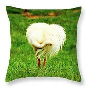 My Heart Baby Ostrich  Throw Pillow