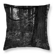My Heaven On Earth Throw Pillow