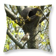 My Home Throw Pillow
