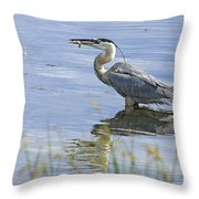 My Late Afternoon Treat Throw Pillow