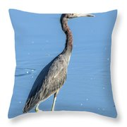 Erect Walking Tricolored Throw Pillow