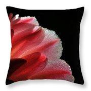 My Little Cactus Flower Throw Pillow