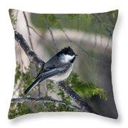 My Little Chickadee II Throw Pillow