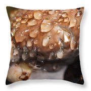 My Little Tree Growth Throw Pillow