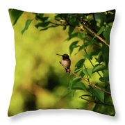 My Little Visitor Throw Pillow