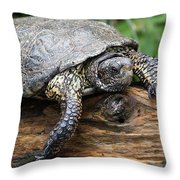 My Log Throw Pillow