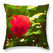 My Love Is Like  A Red Red Rose Of Sharon Throw Pillow