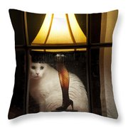 My Major Award Throw Pillow by Kenneth Albin