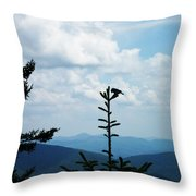 My Mountain Bird Throw Pillow